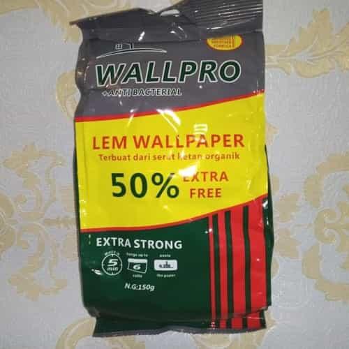 jenis Lem Wall-Pro